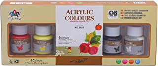 GIMEVAR 6 x 25ml Heavy Body Colors Rich Pigments Acrylic Paint Set for Painting Canvas Crafts