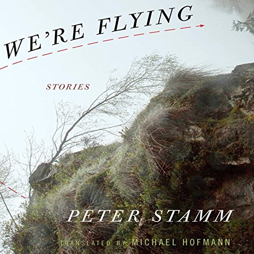 We're Flying audiobook cover art