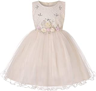 LUKEEXIN Fashion Girls Flower Mesh Dress with Diamond Embroidery Ball Gown Dresses