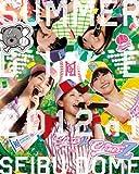 「ももクロ夏のバカ騒ぎ SUMMER DIVE 2012 西武ド...[Blu-ray/ブルーレイ]