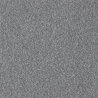 スミノエ タイルカーペット 防炎 制電 ECOS PX-3001S 50×50cm 20枚入