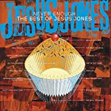 Never Enough - The Best Of Jesus Jones