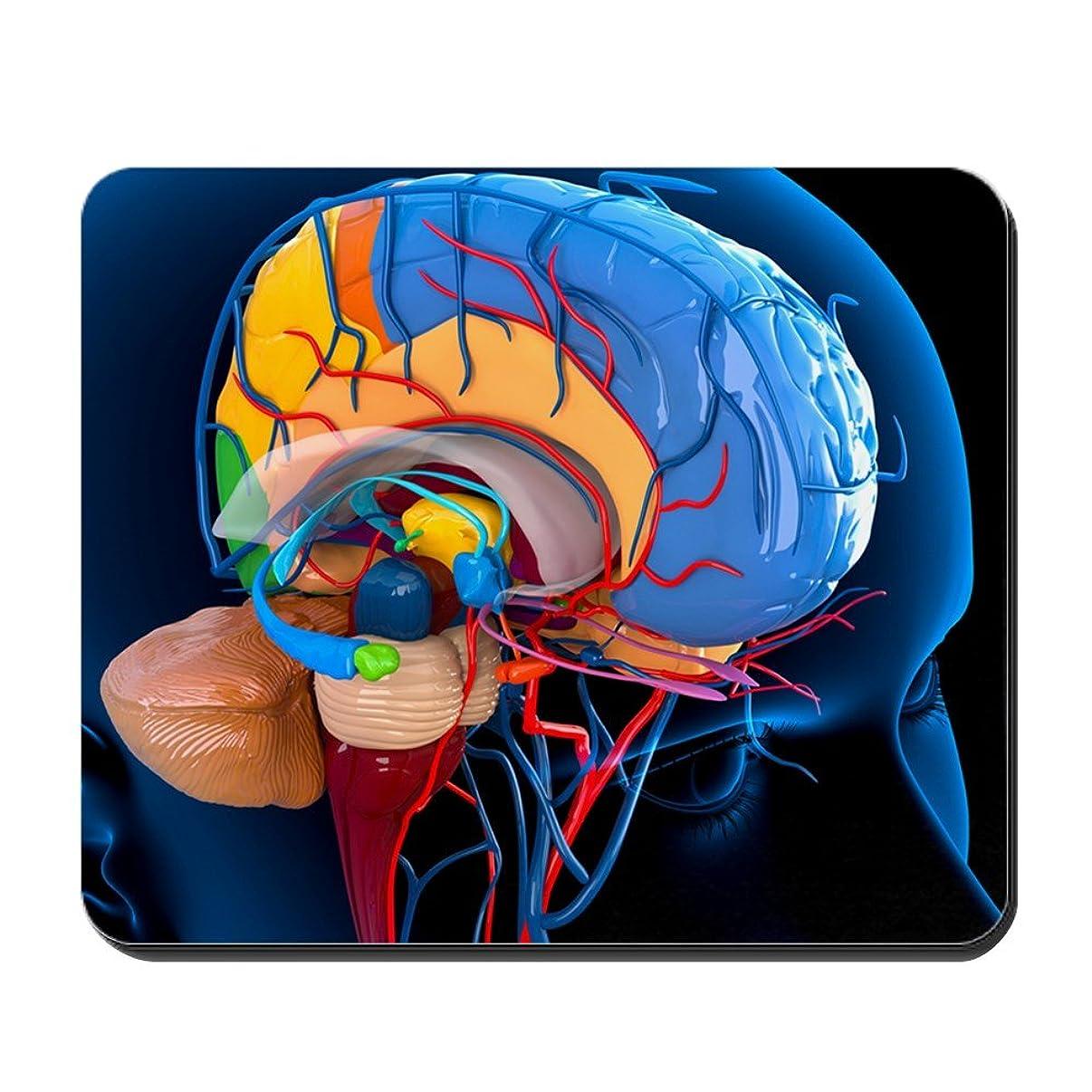 CafePress - Human Brain Anatomy, Artwork - - Non-Slip Rubber Mousepad, Gaming Mouse Pad