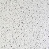 Armstrong Tatra Suspended Ceiling Tiles 600 x 600 Millimetre Pack of 16 Tiles