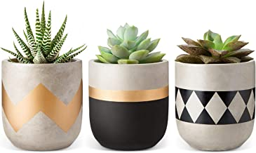 Mkono Cement Succulent Planter Set of 3 Concrete Plant Pots Modern Flower Pots Indoor for..