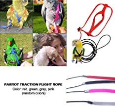 puremood Parrot Harness Leash Flying Anti-bite Traction Adjustable Rope Bird Training Outdoor Carrying Harness and Leash