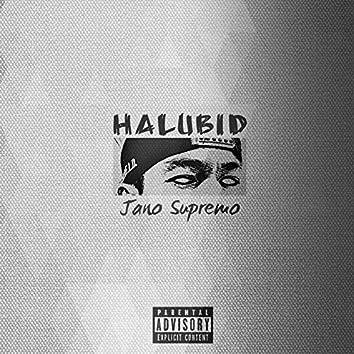 Halubid