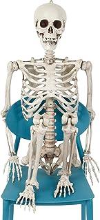 Halloween Hanging Skeleton Life Size 165cm Skeleton Bones for Haunted Houses, Graveyard Halloween Prop Decoration