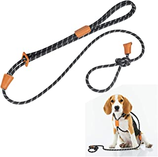 Rope Slip Dog Leash and Harness in One for Small Medium and Large Dogs, Adjustable Nylon Rope Leash and Harness Set with Reflective Stripe(Black)