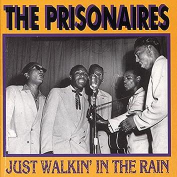 Just Walkin' in the Rain