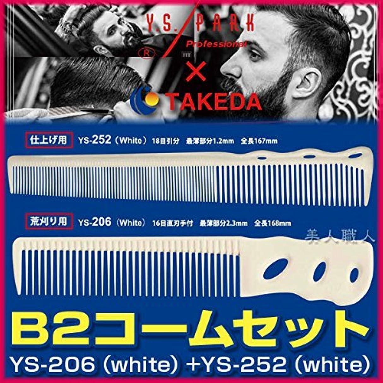 シャンパン取り出すキリマンジャロB2コームセット 【YS-206(white)+YS-252(white)】