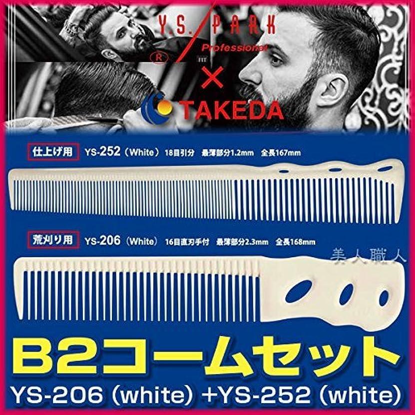 戦闘乗って異常B2コームセット 【YS-206(white)+YS-252(white)】