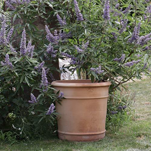 Kreta Keramik | handgefertigter Terracotta Blumen Topf Pflanzgefäß | absolut frostfest, Pflanzkübel zum Bepflanzen für den Innen- und Außenbereich, Canna (50 cm)