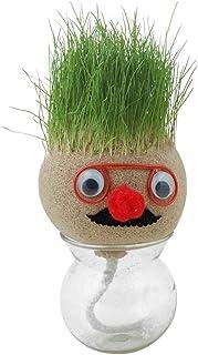 Ahagut Mini groeiend gras hoofd educatief speelgoed grappige tafeldecoratie cadeau voor kinderen, met vaas