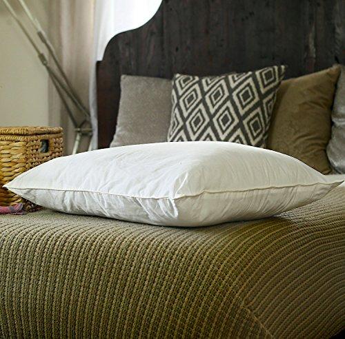 Silk Bedding Direct Almohada RELLENA DE Seda Hebras Largas de Seda de Morera Envueltas Alrededor de un Núcleo de Seda Sintética. 75cm x 50cm. Precio DE Venta BAJO