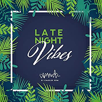 Late Night Vibes: Ibiza Party Mix, Top 100, Best Chill Hits, Lounge Background Music