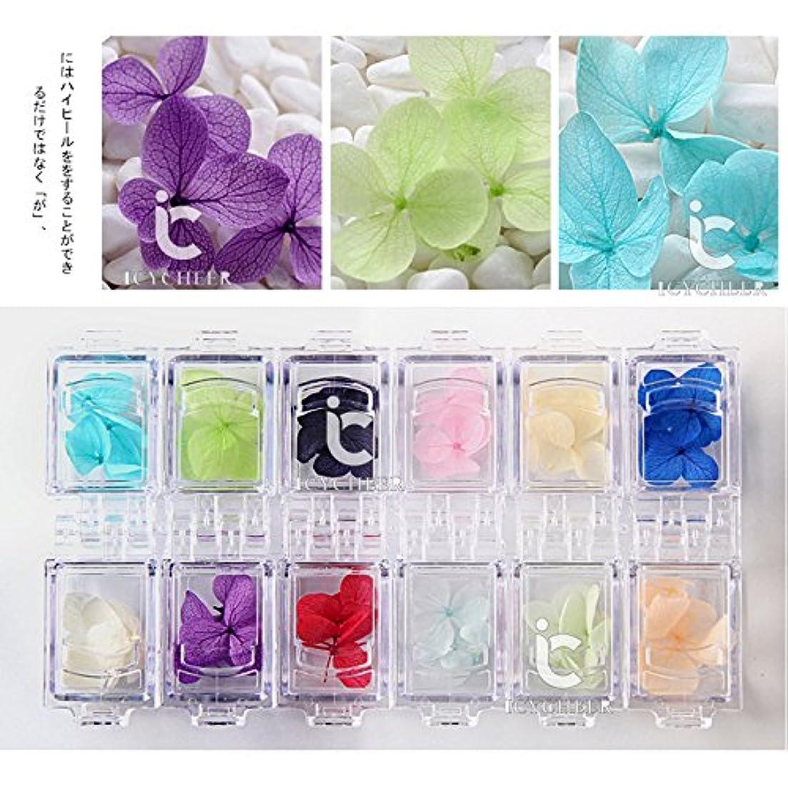 ホームギャラリーフルートICYCHEER 12色の実自然花びらドライドライフラワーUVジェルネイルアートステッカーポーランドデコレーションステッカーDIYマニキュアツール