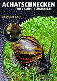 Achatschnecken: Die Familie Achatinidae (Art für Art / Terraristik)