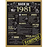 Back in 1981 Poster with Frame 40th Birthday Decoration for Men and Women 40 Years Party Supplies Home Decor for Him or Her (Back in 1981-Gold Frame)