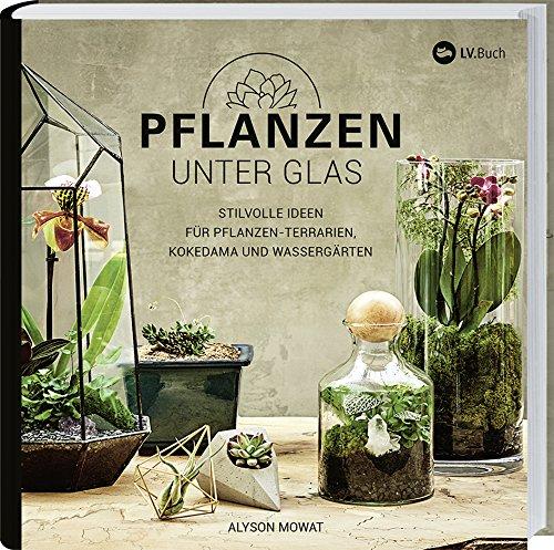 Pflanzen unter Glas: Stilvolle Ideen für Pflanzen-Terrarien, Kokedama und Wassergärten.
