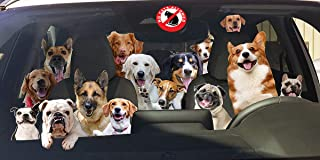 Best car sun shade for dogs Reviews