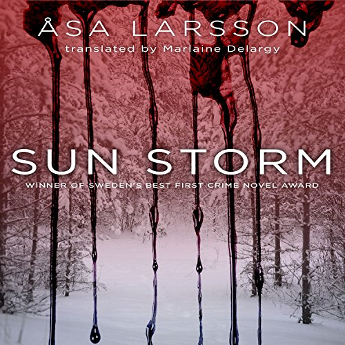 Sun Storm audiobook cover art