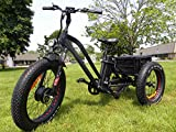 FT-1900 Fat tire Electric Tricycle