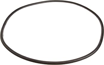 Pentair 24850-0008 21-Inch Cord O-Ring for Tank Replacement for Select Sta-Rite Pool and Spa Filters
