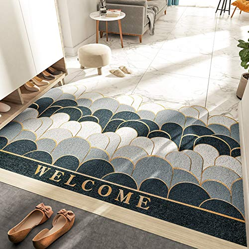 Ausitool Front Door Mat Outdoor or Inside Entryway Welcome Mat with Utility Non Slip Backing Super Absorb Mud Garden Patio High Traffic Areas Front Entrance Door Mat Carpets 36' x 24'