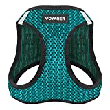 Voyager Step-in Air Dog Harness - All Weather Mesh, Step in Vest Harness for Small and Medium Dogs by Best Pet Supplies - Turquoise, X-Small (Chest: 13' - 14.5')