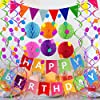 Fecedy Happy Birthday Banner with Colorful Paper Flag Bunting Paper Circle Confetti Garland Swirl Streamers Honeycomb Ball for Birthday Party #5