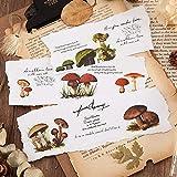 BLOUR Etiquetas engomadas Lindas de la Seta Flores de Kawaii Etiquetas engomadas de la papelería Etiquetas engomadas de Papel Encantadoras para los niños Scrapbooking Photo Ablums10sheets / Set