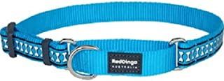 Red Dingo Martingale Collar Reflective Bones, Small-Medium, Turquoise
