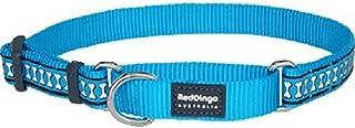 Red Dingo Martingale Collar Reflective Bones, Small-Medium, Turquoise