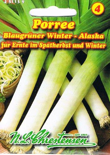 Porree Blaugrüner Winter-Alaska (Portion)