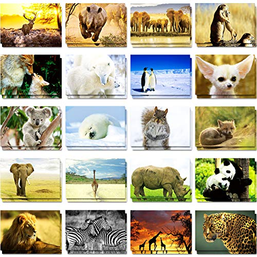 60 Pieces Wild Animal Themed Blank Postcards 20 Designs Postcards Pandas Lions Polar Bears Giraffes Elephants Animal Greeting Postcards, 4 x 6 Inches