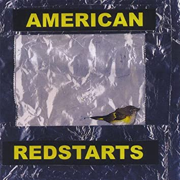 American Redstarts