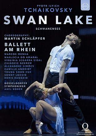 Tchaikovsky: Swan Lake (Choreography By Martin Schlapfer) [DVD] [Import]