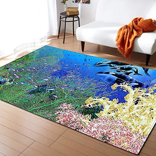 Duurzaam tapijt zacht tapijt zeegras walvis eenvoudige moderne deurmat, gebied tapijten indoor outdoor, woonkamer, slaapkamer, kinderen kwekerij tapijt 47x67.