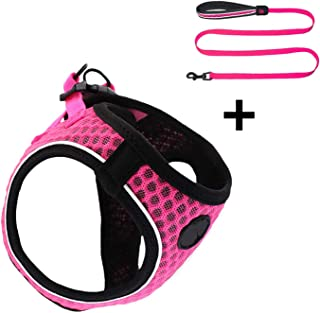 Cat Small Dog Harness and Leash Set Reflective Soft Mesh Chihuahua Dog Puppy Harness Lead Dog Vest Harness Arnes Perro