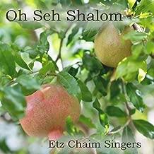 Oh Seh Shalom