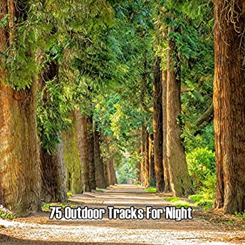 75 Outdoor Tracks For Night