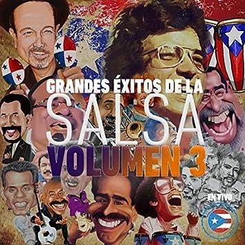 Grandes Éxitos de la Salsa, Vol. 3 (En Vivo)