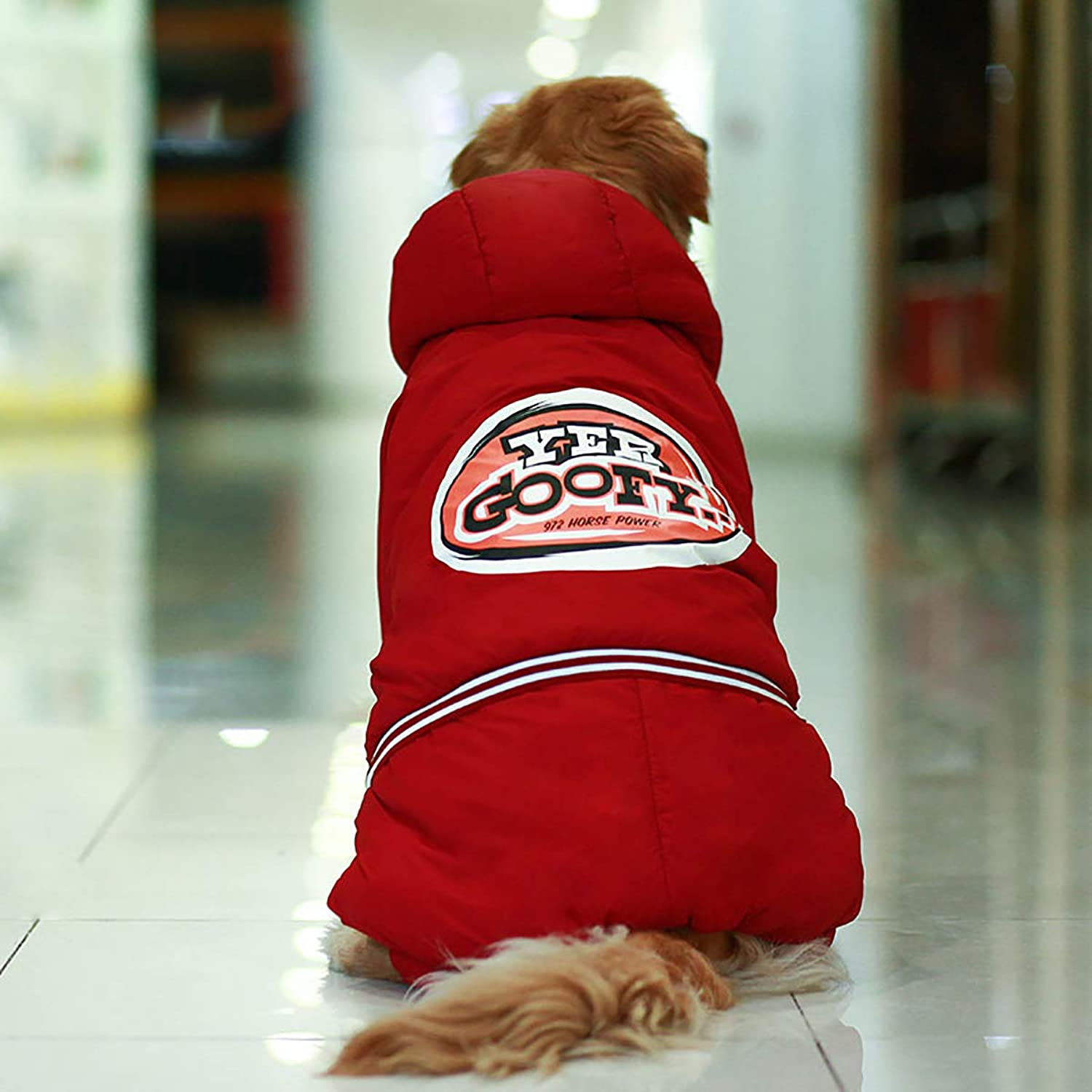 Dog Clothes Winter Clothes, Jinmao Labrador Satsuma, Medium and Large Dogs Thick and Velvet FourLegged Cotton Coat,Red,XXL