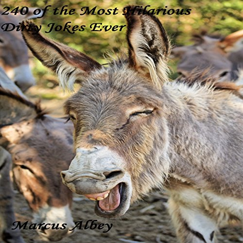 240 of the Most Hilarious Dirty Jokes Ever audiobook cover art