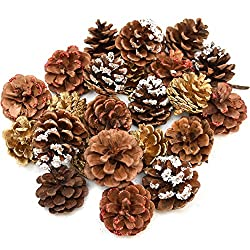 Pine Cones for Christmas Fall Thanksgiving Harvest Autumn Party Craft Accessory Decorations