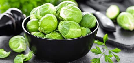 Brussels Sprout Seeds - 200+ Rare Heirloom Brussel Sprout Seeds (Long Island Improved) Yields 50-100 Sprouts per Plant! Gu...