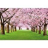 GREAT ART Mural de Pared – Árbol De Cerezo En Flor – Primavera Naturaleza Paisaje Avenida Flor De Cerezo Flor De Sakura Primavera Foto Tapiz Y Decoración (336 x 238 cm)