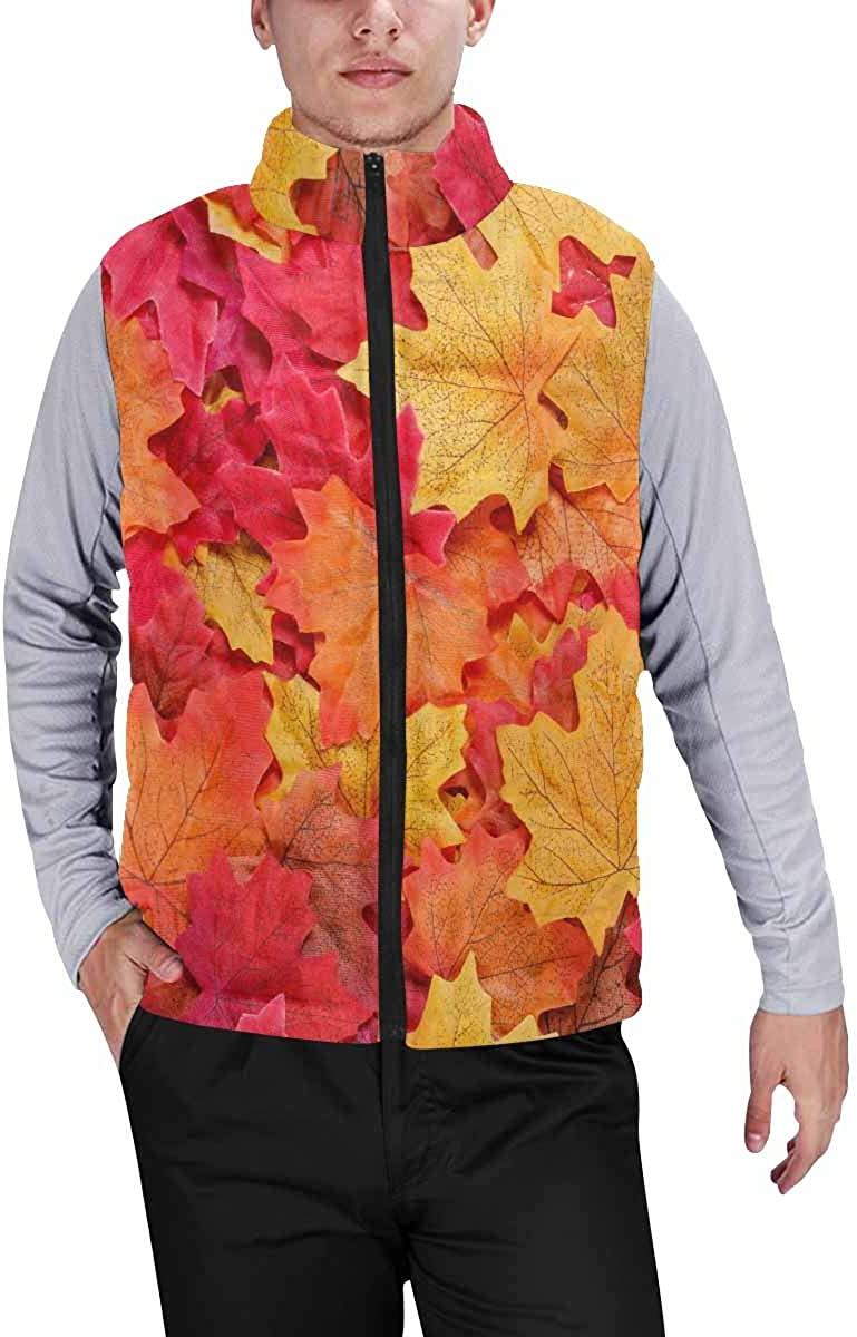 InterestPrint Men's Winter Full-Zip Outwear Padded Vest Coats Cute Koala