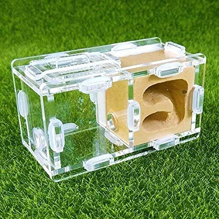 KDGPUM New Design Ant Nest DIY with Feeding Area Ant Farm Acrylic Plaster Villa Pet Mania for House Ants Insect Ant Workshop : 02